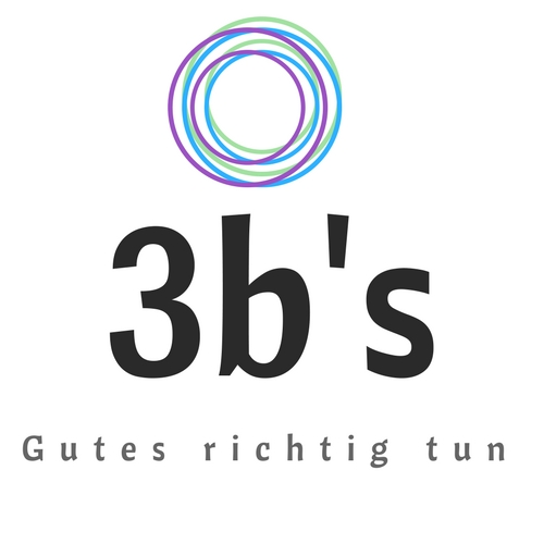 3b`s Logo
